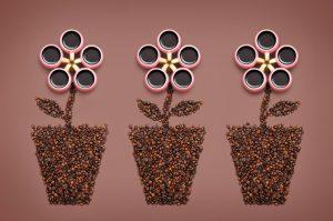 Daryna-Kossar-Coffee-Flowers